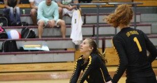 Reagan Castilaw (4) on the save for Vidor.